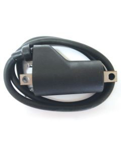 COIL EXT IGN 600 800 TRIP. (1)