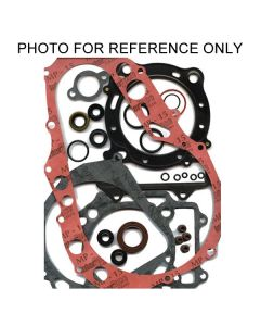 Winderosa Complete Gasket Kit with Oil Seals