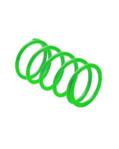 CLUTCH SPRINGS POL LIME G(EBS)